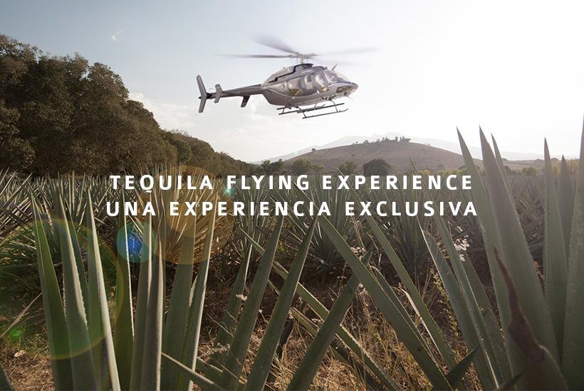 Tequila Flying Experience: una forma exclusiva de vivir Tequila